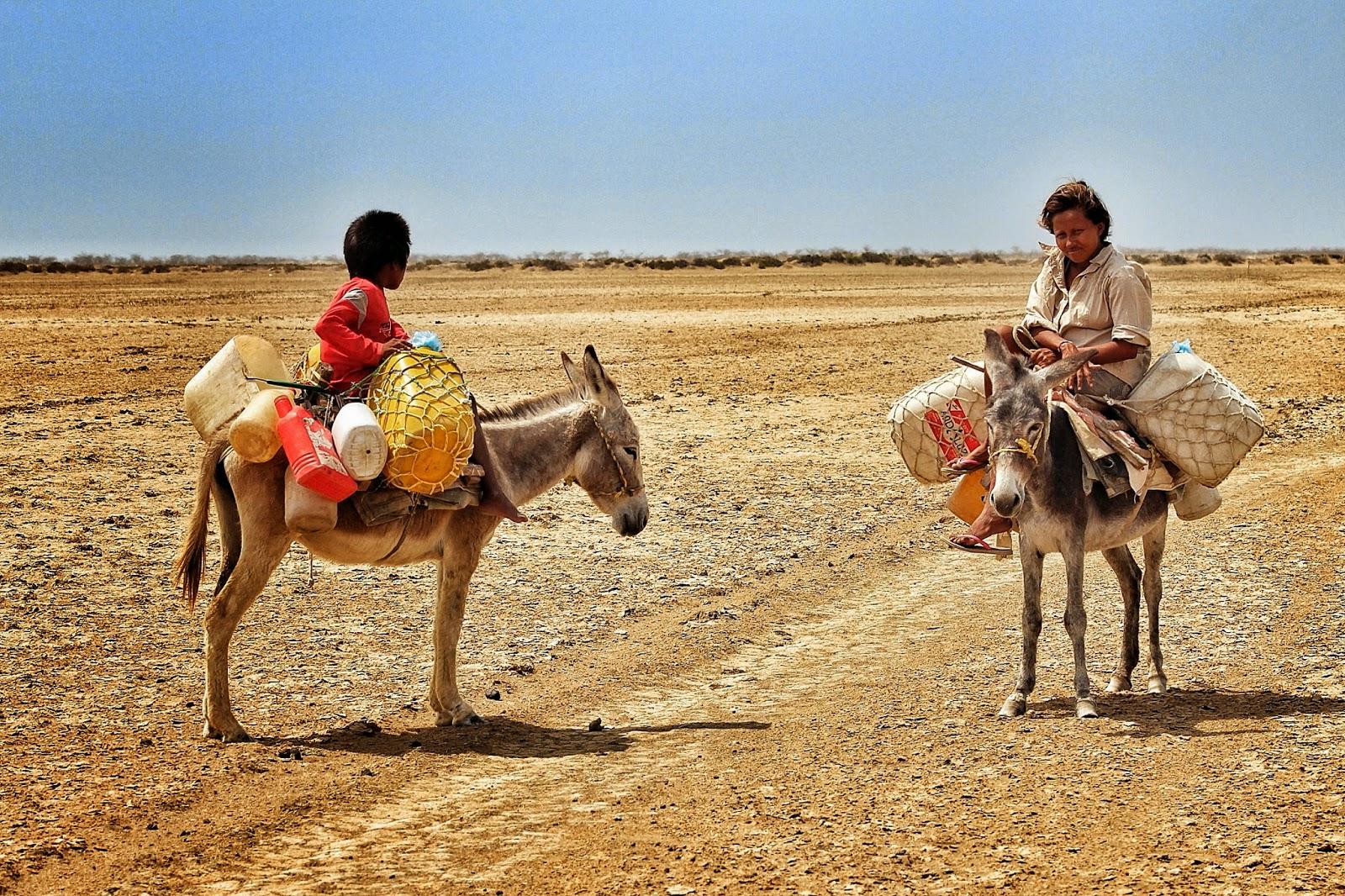 Sequia en La Guajira